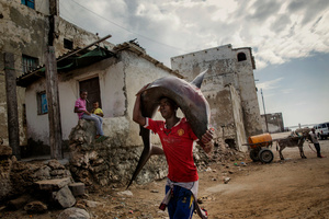 Somalia: the resilient Nation (life returns in aftermath Al- Shabaab)_06