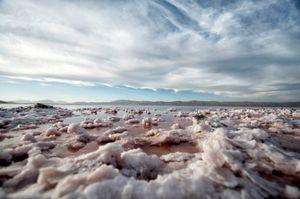Salty Lake