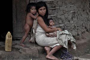Kogui family