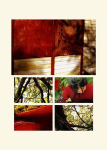 N°59 - Passage - Rouge carmin - 2008.