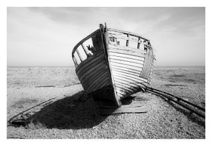 Dungeness #8