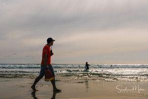 Ocean life6