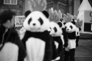 COP15 #8, © Andreas Olesen