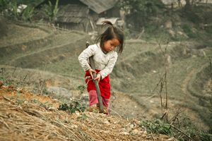 Working Little Girl