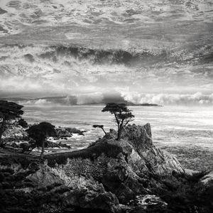 DrowningSky  #7 - Last Cypress