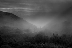 Tranquillity, and Fog