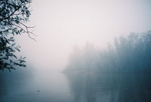 Murray River Morning.