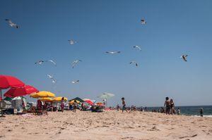 Ocean City, Maryland. © Kate Vredevoogd