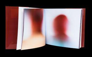 Heads © Olivia Parker, 2008