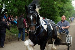 Appleby Fair 6