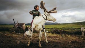 Growing up as a Dukha in Mongolia
