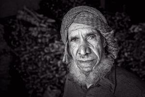 Coal Trader