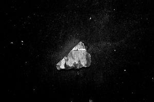 Dark Specimen 06