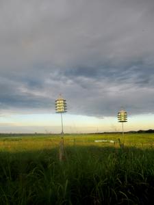 Kansas Wetlands-Daily Journeys-6