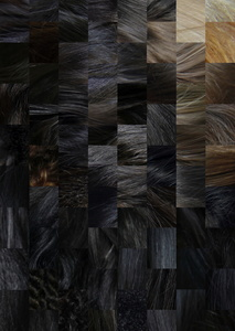 HAIR Grandient with of different ethnic origins.  Art-collage №8