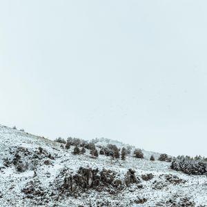 Trasposizione D'Inverno 8