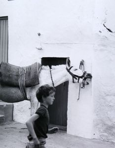 Boy and Donkey, Olvera © Eric Blau
