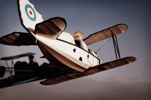 A Memory of Flight   © Seán Duggan