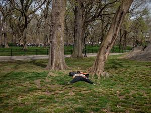 Sleeping at Edge of Park