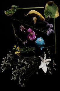 Flowery 7