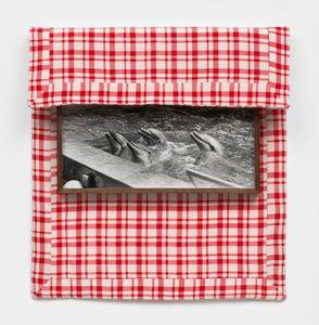 Untitled (Dolphins), 2013. Gelatin-silver print, walnut frame, four-ply silk © Elad Lassry, courtesy Francesca Pia, Zurich