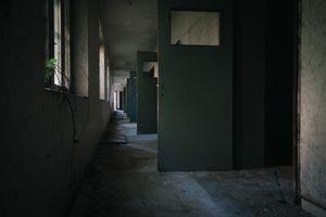 The Asylum #12