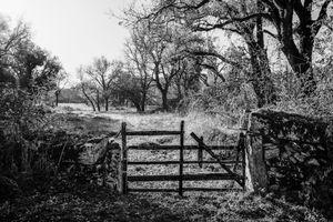 La portail