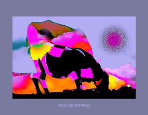 Méduse astrale