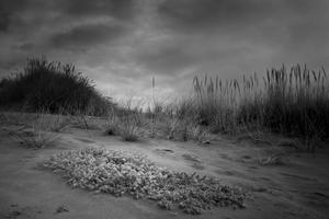 Ona Beach