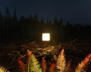 Alternatives landscapes
