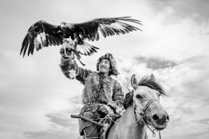 Lord of birds