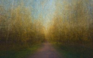 Path 16, 2011