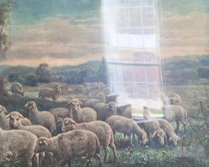 Untitled - Flock