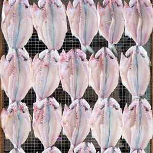 Obsessiveness: Sun-dried Fish