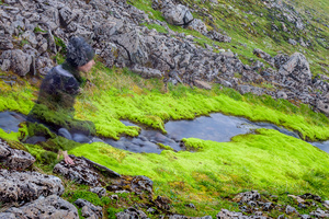 the only vegetation on the highlands of Iceland