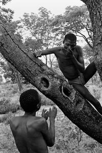 Bushmen on a hunt