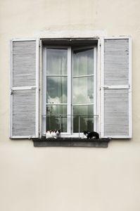 open windows 006