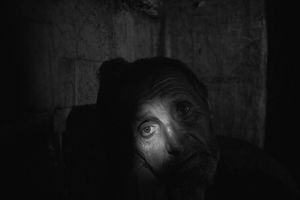UndergroundLeonid Oleinik, 57 y.o. resident of the Staromikhailivka  village .The village of Staromykhailivka is located 20 km west of Donetsk.His home and property were burnt up during a shelling of the village.He lives alone and hides in the basement of his destroyed house when shelling begins.