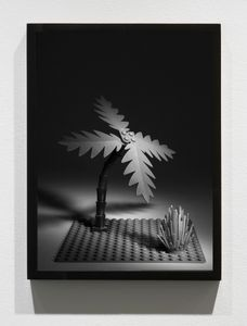 Lego Palm Tree, 2012/15, Pigment print, 16 x 12 inches