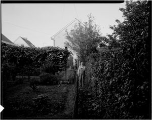 HK15 © Matjaz Wenzel