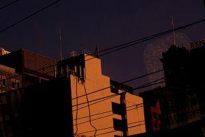 Urban Mesh 0090