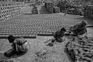 © Asis Kumar Sanyal