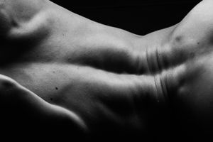 Dark Bodies - How Muscles can bend