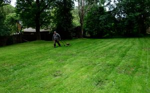 All Green Mowing the lawn...
