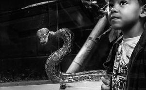 Whispers - Python