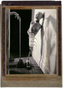 Vanitas Light & Shadow