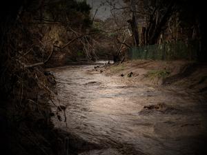 Flash flood, 2019