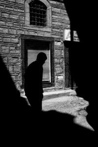 Shadows XIV